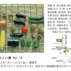 写真とコトノハ展Vol.13のお知らせ