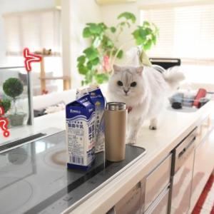 シュリって牛乳初めてだったかも…