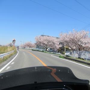 奈良のスイーツ行ってみよっ!