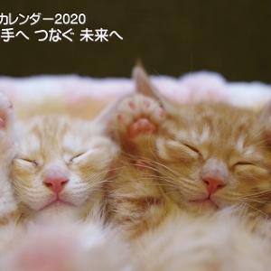 12/8 前編(移動したけど)