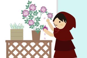 ベランダの花の手入れと謎の物体