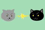 猫の話 その79