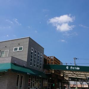 ぶとう畑(福岡市南区)