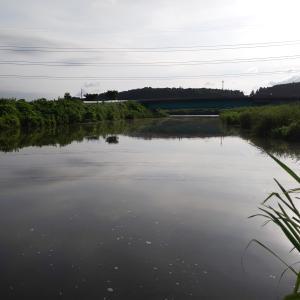 バス釣りに行って来ました(^_^;)(^_^;)