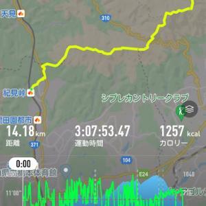 【リハビリハイキング 紀見峠→金剛山 の反省】 No.6156