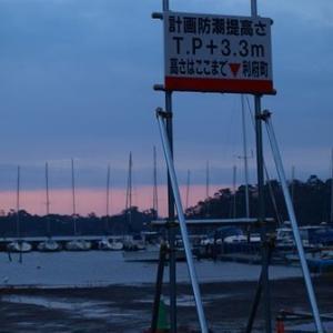 越前浜田漁港の朝 2014