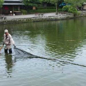 九州旅行5日目(水俣から熊本・水前寺公園へ)2016