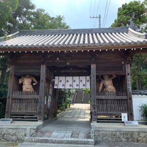 営業再開51_52日目 ・ 観音寺と神恵院
