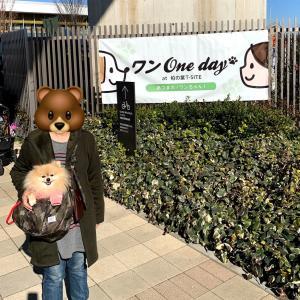 ワン One day at柏の葉T-SITE