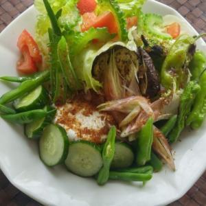 夏野菜たっぷりサラダの朝ごはん