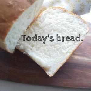 ふわふわ食パンのあさごパン