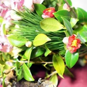 新春のお花です(^^♪