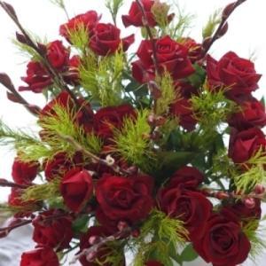 赤い薔薇で気持ちも高揚(^^♪