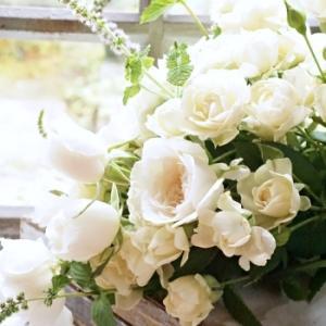 夏には香りよく涼し気な白いWABARAを