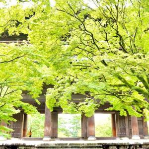 Goto京都