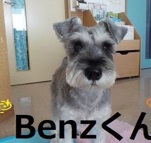 【Benzくん編】
