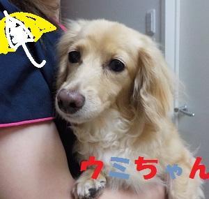 【ウミちゃん編】