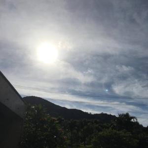 日食〜持ち帰りのみの営業です〜7/1(水)まで