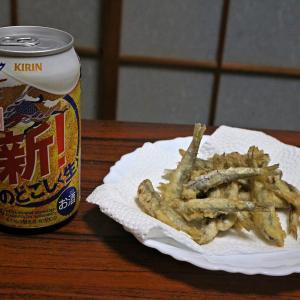 のどごし生 小いわし天ぷら