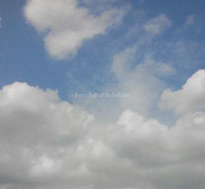 初夏の空が続きます