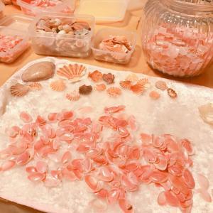 お彼岸と桜貝