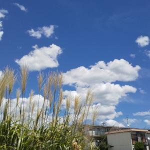 真夏の空模様