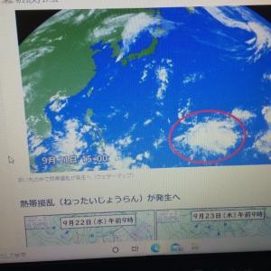 台風のたまごが、、、、らしいです。