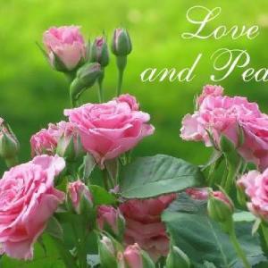 地球のために真実の愛にフォーカスする