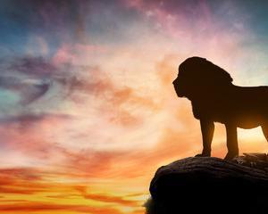 宇宙からのパワーを受け取れるライオンズゲートによりもたらされたもの