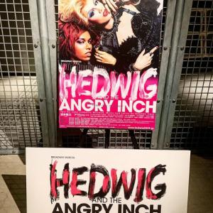 HEDWIG AND THE ANGRY INCH ゼップなんば