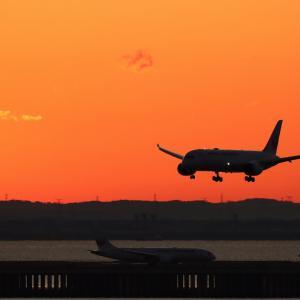 JAL Dreamliner アプローチ