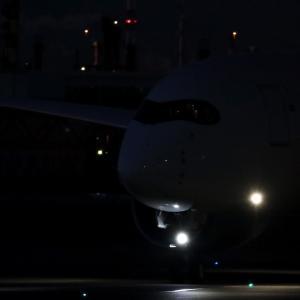 早暁の A350