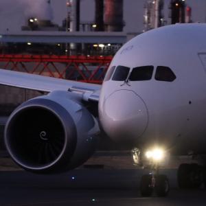 伊丹に向かう JAL Dreamliner