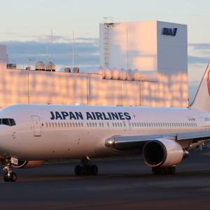 ノーマル・カラーに戻った JAL の元スペマ B6