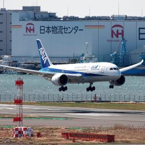 長崎からの ANA Dreamliner