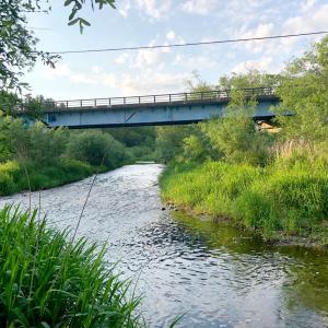 2021.6.9 渓流釣り (士幌川、イコッポ川)