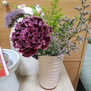 『ブルーミー』マダム服のカラーのような今週のお花