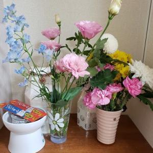 今週のお花&臭いの元を探せっ!