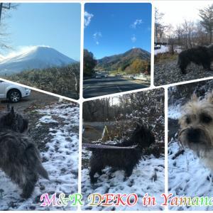 富士山に一番近い山荘♪