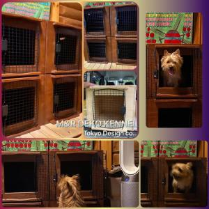 Newオリジナル木製ハウス