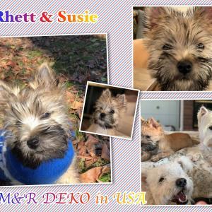Rhett&Susie