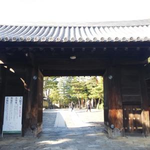 京都の紅葉2020 大徳寺