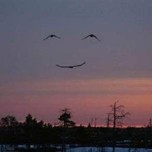 冬の空わたる笑顔に見る笑顔 (*^^)v