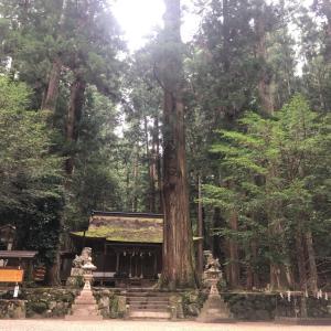 熱いリクエストにお応えし、奈良県の龍穴神社へ。