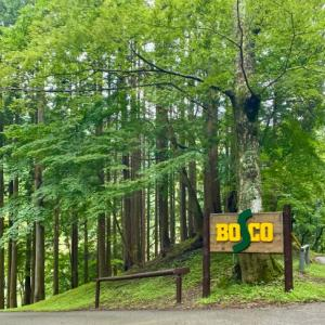 梅雨にも負けずキャンプ!!@ BOSCO Auto camp base