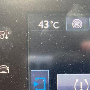 暑っっっ!!!