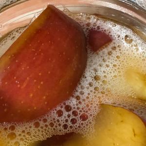 りんご酵母 4日目