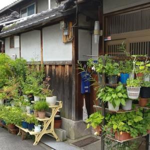 久々の日本 - 昭和な風景