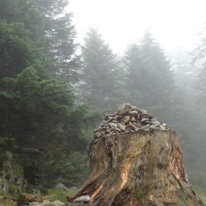 ボンジュール、霧のLa Fruitière