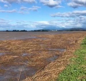 長野県 千曲川氾濫・小山市の渡良瀬遊水地が大海原